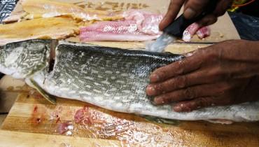 jak-filetowac-rybe