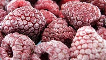 jak-mrozic-owoce