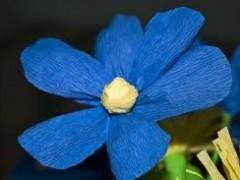 Jak wykonać kwiaty z bibuły?