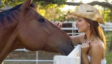 Jak okiełznać konia