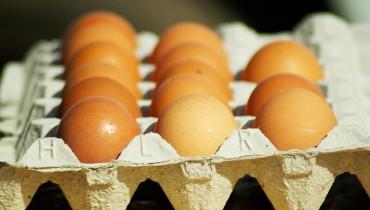jak-sprawdzic-swiezosc-jajka