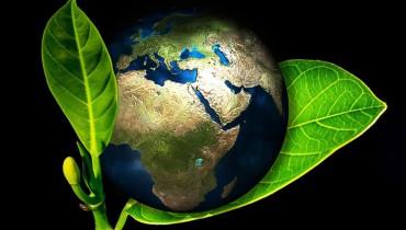 jak-obchodzic-swiatowy-dzien-ziemii