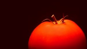 Jakie zalety ma GMO?