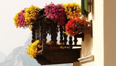 jak-tworzyc-kompozycje-balkonowe