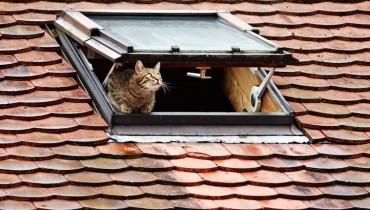 jak-poprawnie-izolowac-dach