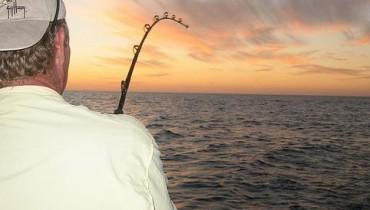 Jak holować rybę