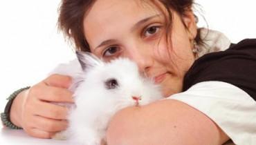 Jak oswoić królika